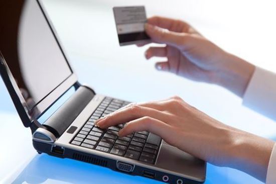Picture of Online Payment Module